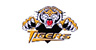 http://neajbhlhockey.pointstreaksites.com/img/photo_album_images/2587/14282/tigers.jpg